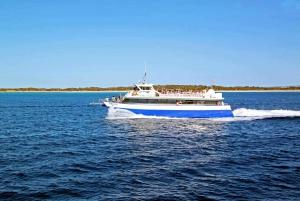 From Playa den Bossa: Formentera Fast Ferry Return Ticket