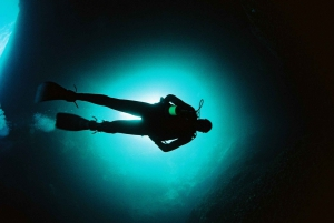 Ibiza: 2-for-1 Fun Dives for Qualified Divers Only