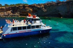 Ibiza: 4-Hour Es Vedrá Cruise