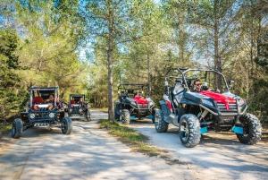 Ibiza: Buggy Sightseeing Tour