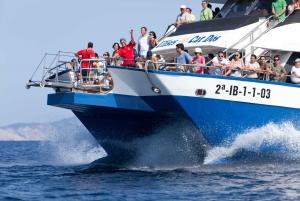 Ibiza: Full-Day Formentera Beach Cruise