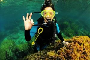 Ibiza: Half-Day Beginners Scuba Dive Program