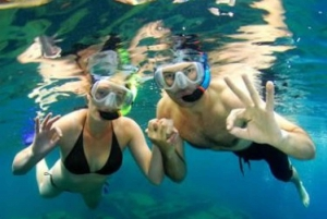 Ibiza Scuba Diving for Beginners and Snorkeling