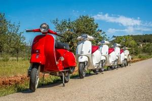 Ibiza: Sightseeing Vespa Scooter Tour