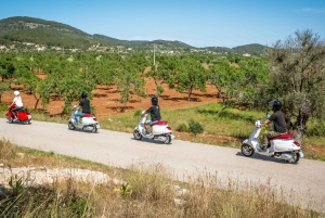 Sightseeing Vespa Scooter Tour