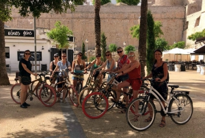 Town Highlights Tour by Bike