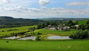 Nettlecombe Farm