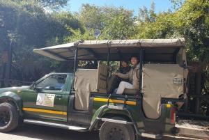 From Johannesburg: Full-Day Kruger National Park Safari