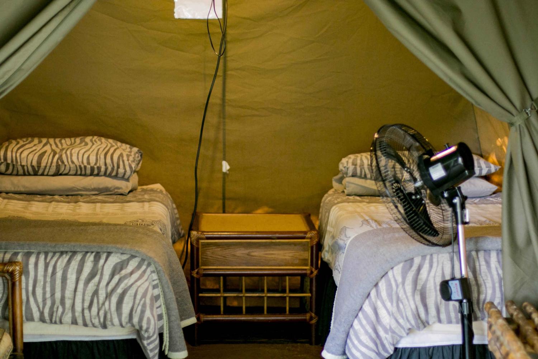 Johanessburg: Kruger National Park Budget Camping Safari