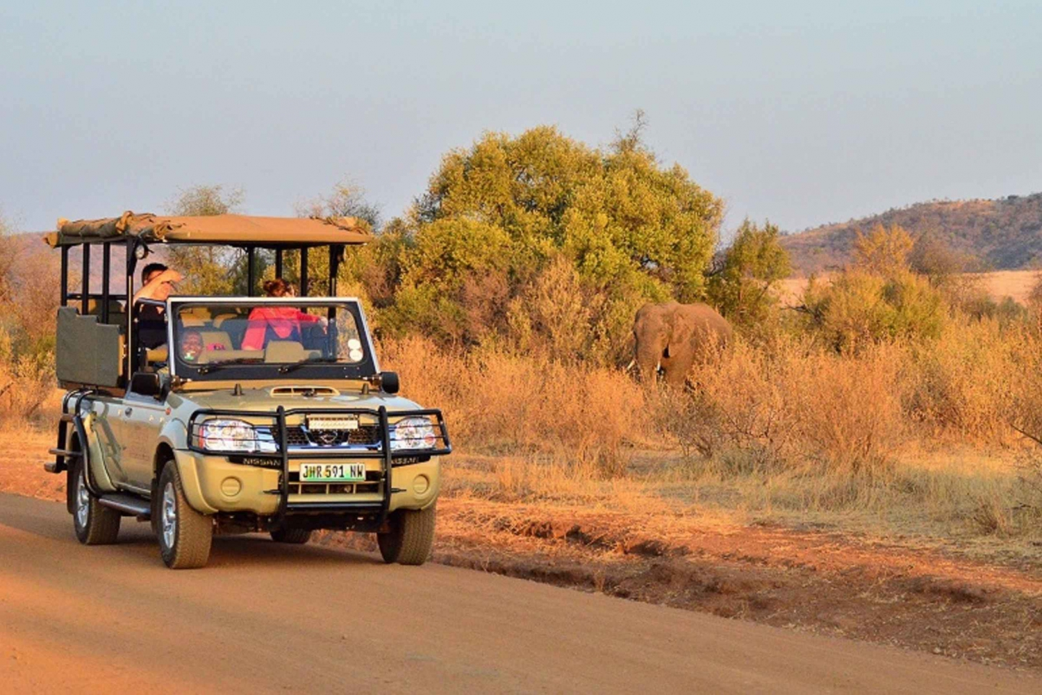 Pilanesberg Full-Day Shared Safari with Sun City Visit