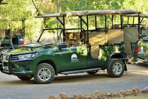 Pilanesberg Nature Reserve Full-Day Safari from Johannesburg