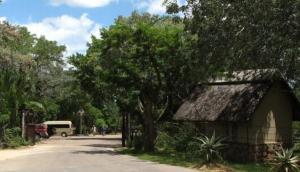 Pretoriuskop Camp