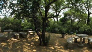 Skukuza Picnic Site