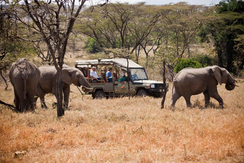 3 Days in Maasai Mara - Experience Kenya by Air