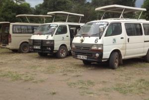 Amboseli National Park: Full-Day Tour from Nairobi