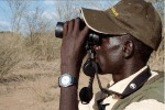 Bird watching (Lake Baringo)