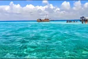 Dhow Sailing Tour of Kisite Marine Park & Wasini Island