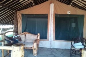 From Nairobi: 2-Day Amboseli National Park Safari