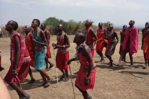 From Nairobi: 3-Day/2-Night Maasai Mara Group Safari