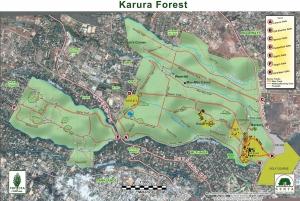 From Nairobi: Karura Forest Nature Hike