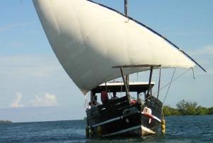 Funzi Island Dhow Day Tour