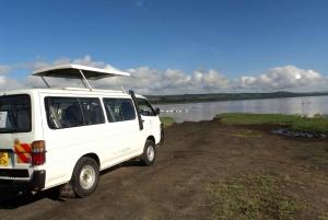 Lake Nakuru National Park: Full-Day Tour
