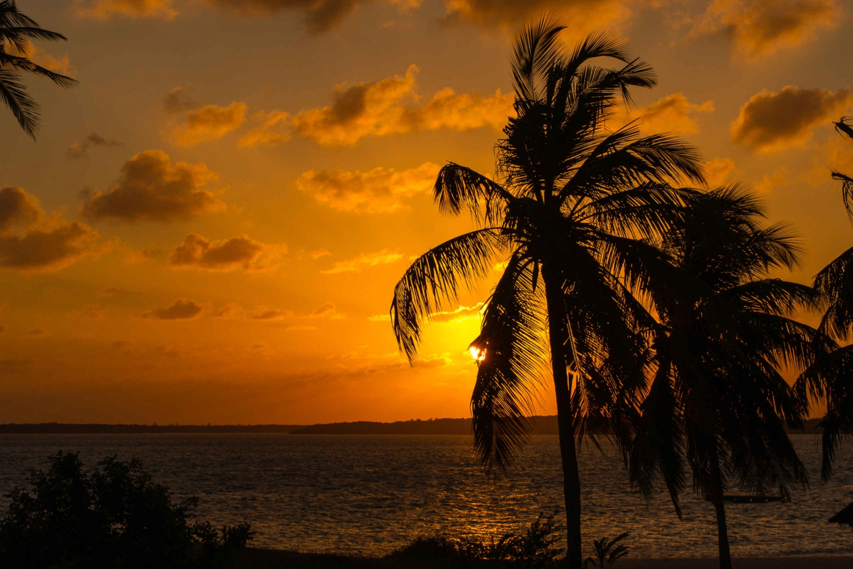 Lamu Island: Sunset Cruise