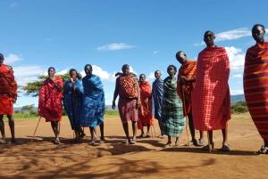 Maasai Mara 3-Day Budget Safari