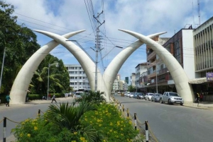 Mombasa: Discovery Day Tour and Haller Park