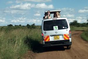 Nairobi: 3-Day Maasai Mara Camping Safari