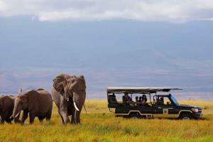 Nairobi: 4-Day Maasai Mara and Lake Nakuru Camping Safari