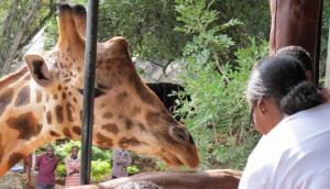 Nairobi City Tours