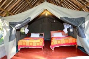 Nairobi: Private 5-Day Masai Mara, Nakuru, and Naivasha Tour