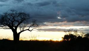 Suntrek Safaris