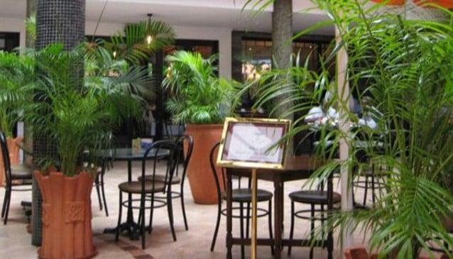 The Thorn Tree Café