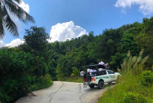 4x4 Off Road Island Safari Tour Including Lunch
