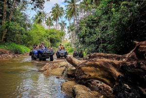 ATV Quad Bike Safari Tour