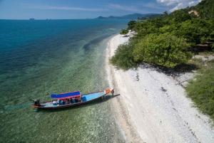 Koh Samui: Koh Tan Hidden Gems Eco Tour and Boat Ride