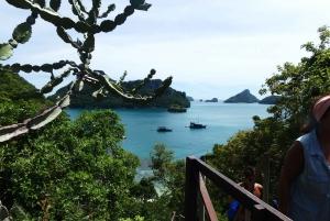 Mu Ko Ang Thong Park: Semi-private Sunset Cruise Tour