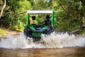 Off-Road Buggy Jungle Safari