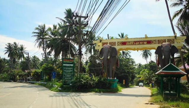 The Elephant Gate
