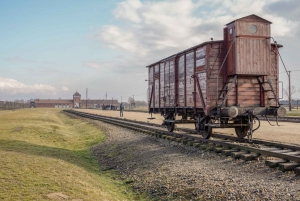 Auschwitz and Birkenau Tour with Licensed Guide