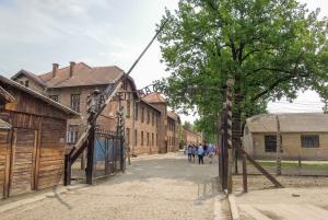 Auschwitz and Wieliczka Salt Mine Combo Tour