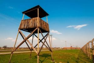 Auschwitz-Birkenau and Wieliczka Salt Mine Tour from Krakow