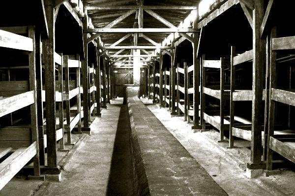 Auschwitz Organised Tours