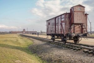 Auschwitz-Birkenau: Fast-Track Ticket and Guided Tour