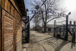 Auschwitz-Birkenau: Fast-Track Ticket and Tour No Transport