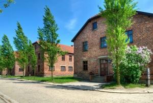 Auschwitz-Birkenau: Guided Tour and Transfer