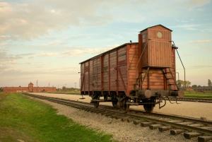 Auschwitz-Birkenau: Guided Tour & Optional Bus from Krakow