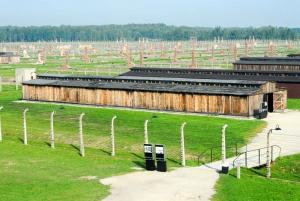 Auschwitz-Birkenau Memorial Guided Tour from Krakow